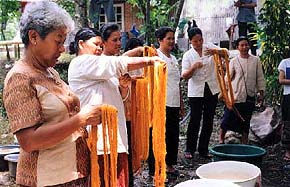 yarn dyeing with natural dyes, Thailand